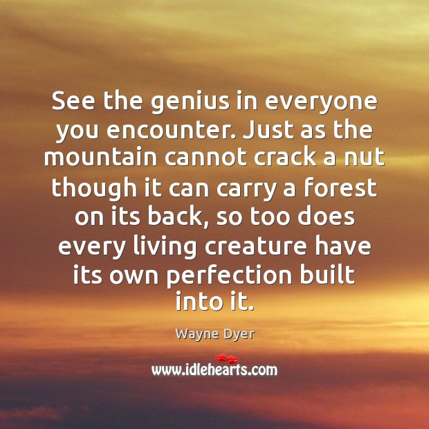 Image, See the genius in everyone you encounter. Just as the mountain cannot