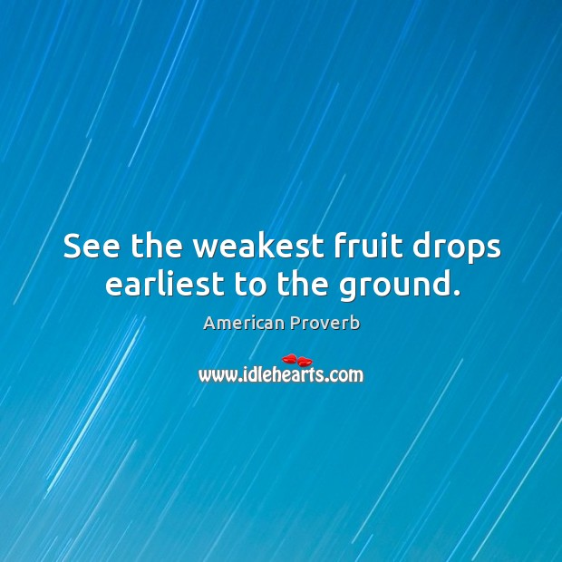 See the weakest fruit drops earliest to the ground. American Proverbs Image