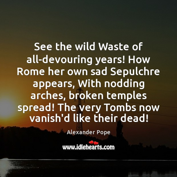 See the wild Waste of all-devouring years! How Rome her own sad Alexander Pope Picture Quote