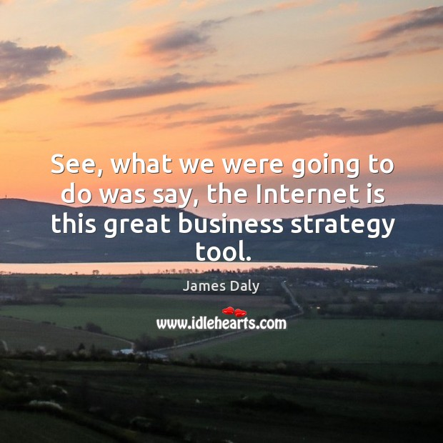 See, what we were going to do was say, the internet is this great business strategy tool. James Daly Picture Quote