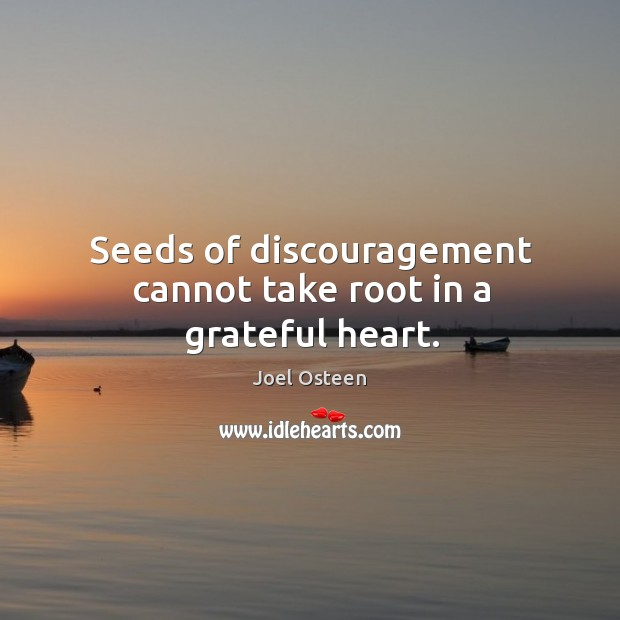 Image, Seeds of discouragement cannot take root in a grateful heart.