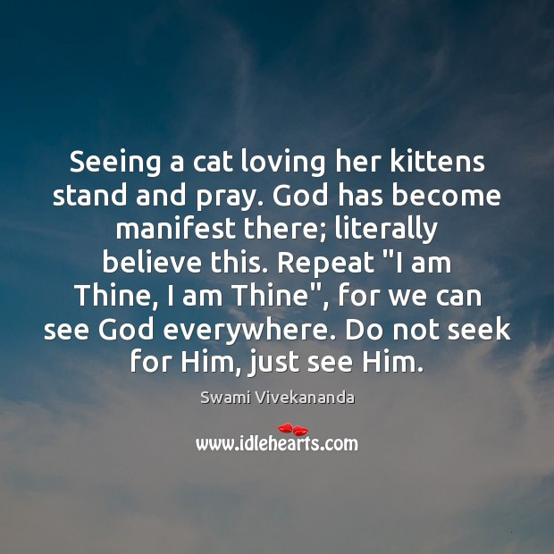 Seeing a cat loving her kittens stand and pray. God has become Image