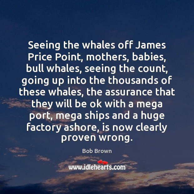Image, Seeing the whales off James Price Point, mothers, babies, bull whales, seeing