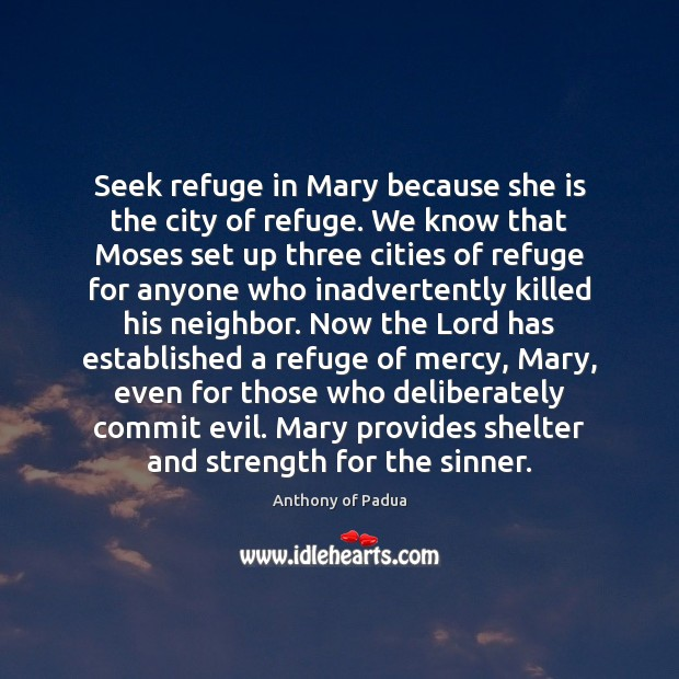 Image, Seek refuge in Mary because she is the city of refuge. We