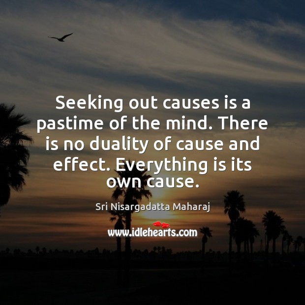 Seeking out causes is a pastime of the mind. There is no Image
