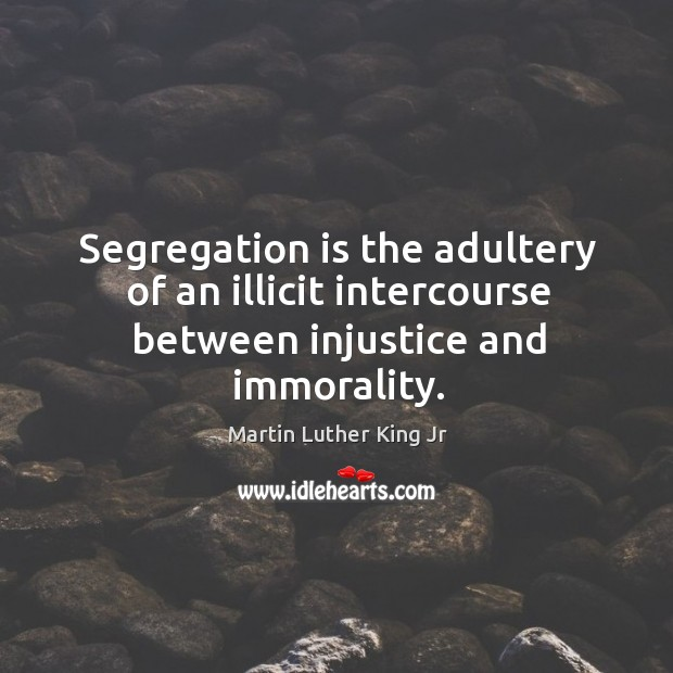 Image, Segregation is the adultery of an illicit intercourse between injustice and immorality.