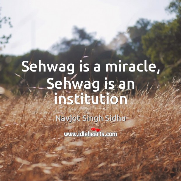 Sehwag is a miracle, Sehwag is an institution Image