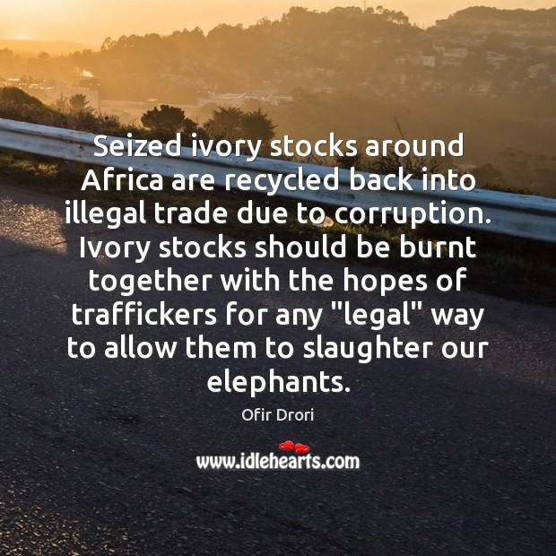 Seized ivory stocks around Africa are recycled back into illegal trade due Legal Quotes Image