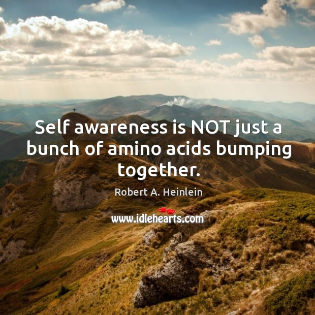 Image, Self awareness is NOT just a bunch of amino acids bumping together.