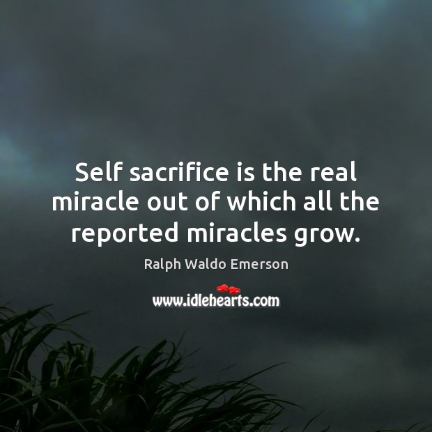 Self sacrifice is the real miracle out of which all the reported miracles grow. Sacrifice Quotes Image