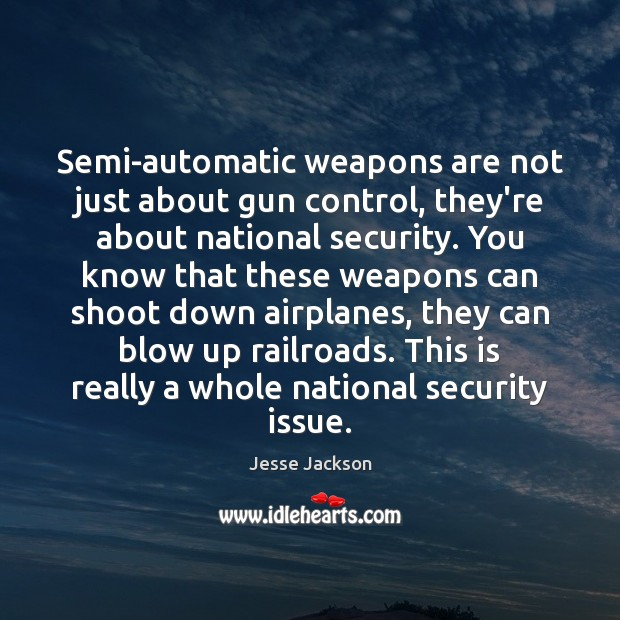 Image, Semi-automatic weapons are not just about gun control, they're about national security.