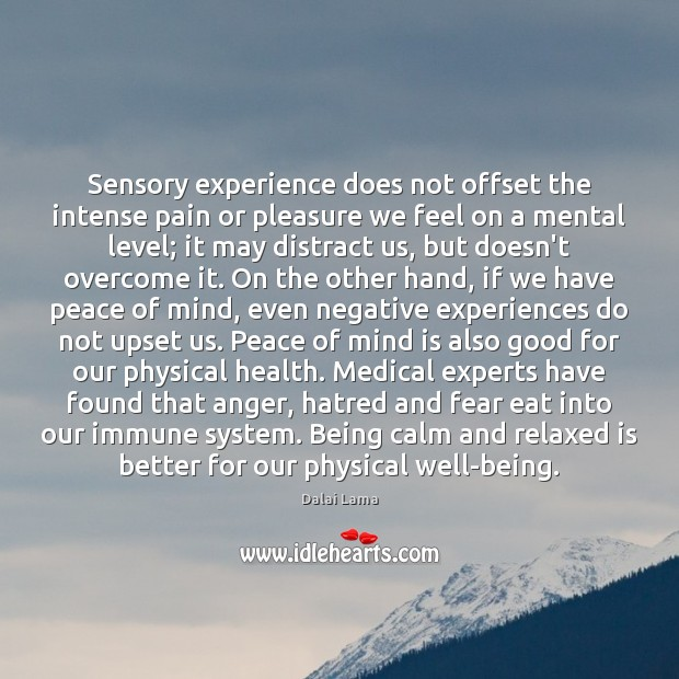 Sensory experience does not offset the intense pain or pleasure we feel Image