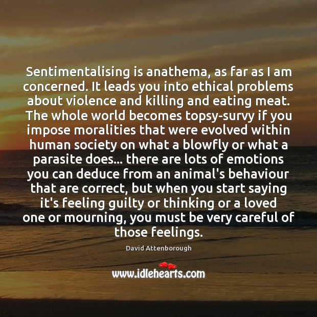 Image, Sentimentalising is anathema, as far as I am concerned. It leads you