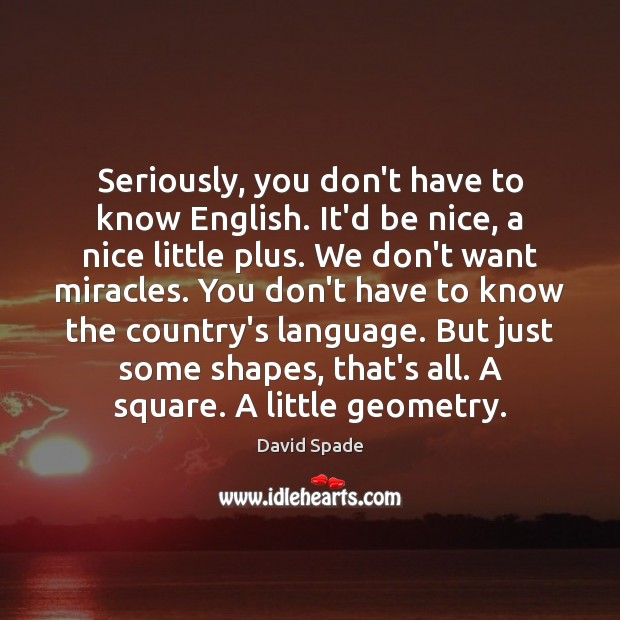 David Spade Picture Quote image saying: Seriously, you don't have to know English. It'd be nice, a nice
