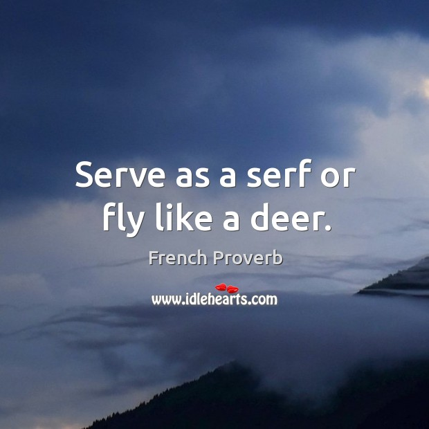 Image, Serve as a serf or fly like a deer.
