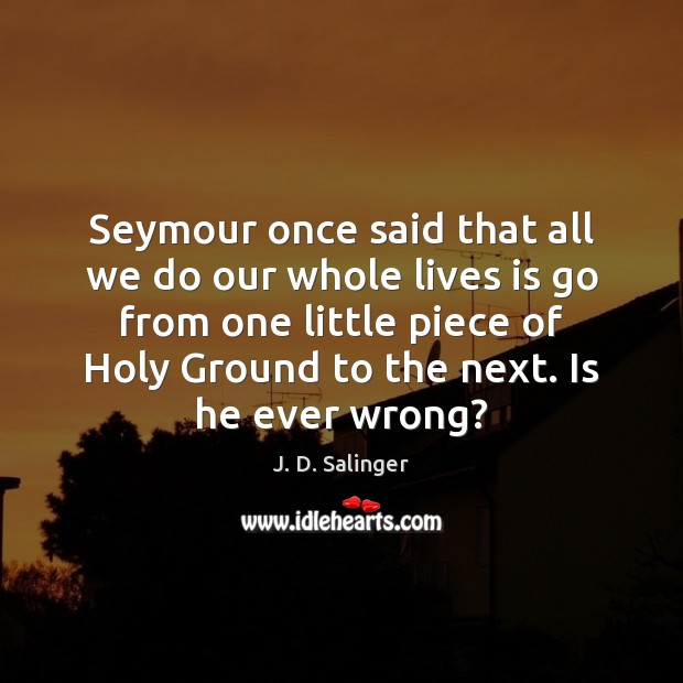 Seymour once said that all we do our whole lives is go J. D. Salinger Picture Quote