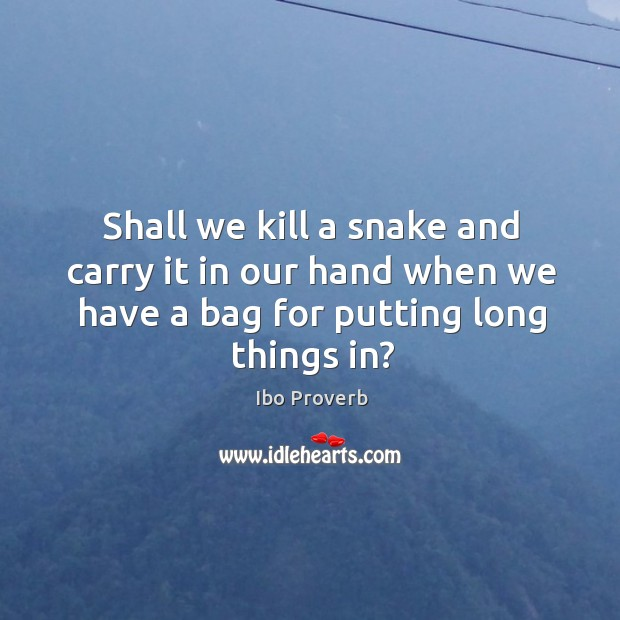 Shall we kill a snake and carry it in our hand when we have a bag Ibo Proverbs Image