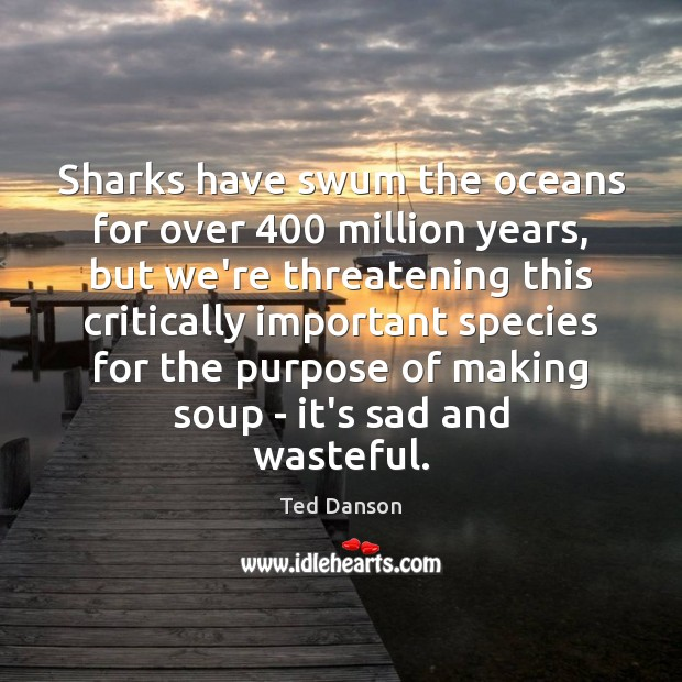 Sharks have swum the oceans for over 400 million years, but we're threatening Ted Danson Picture Quote