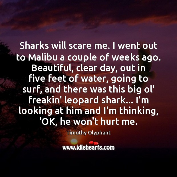 Sharks will scare me. I went out to Malibu a couple of Image