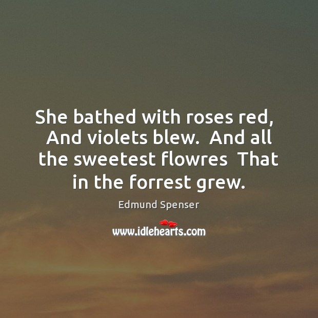 She bathed with roses red,   And violets blew.  And all the sweetest Edmund Spenser Picture Quote
