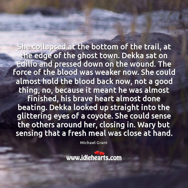 Image, She collapsed at the bottom of the trail, at the edge of