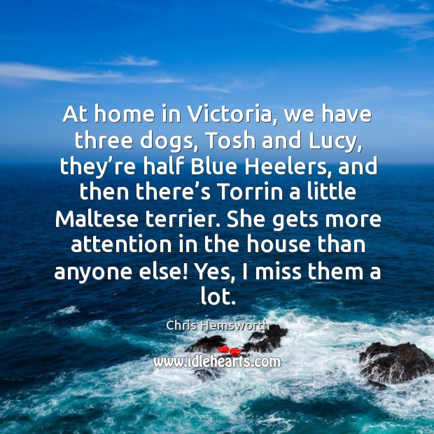 She gets more attention in the house than anyone else! yes, I miss them a lot. Chris Hemsworth Picture Quote