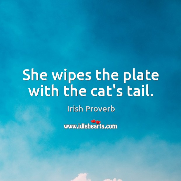Image, She wipes the plate with the cat's tail.