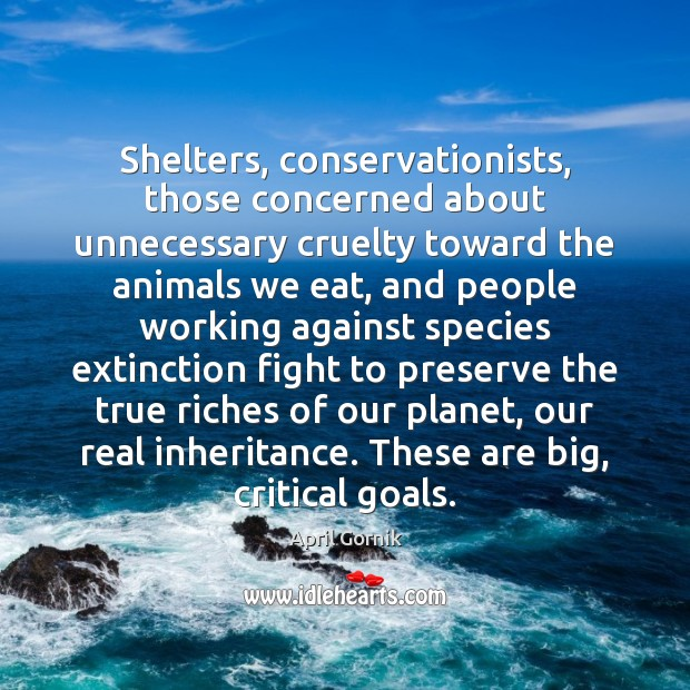 Image, Shelters, conservationists, those concerned about unnecessary cruelty toward the animals we eat,