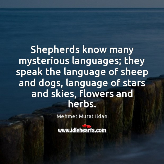 Shepherds know many mysterious languages; they speak the language of sheep and Image
