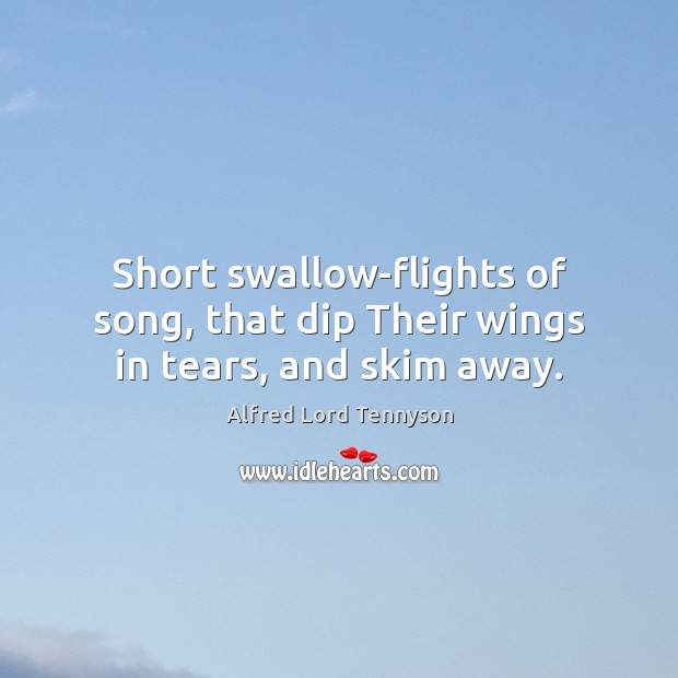 Image, Short swallow-flights of song, that dip Their wings in tears, and skim away.
