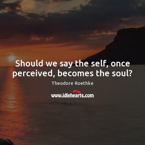 Should we say the self, once perceived, becomes the soul? Image