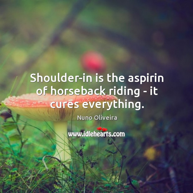 Shoulder-in is the aspirin of horseback riding – it cures everything. Image