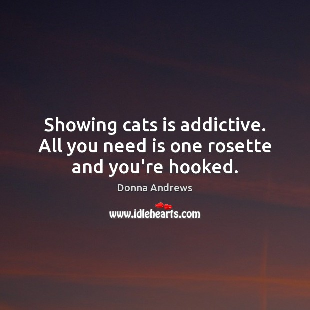 Image, Showing cats is addictive. All you need is one rosette and you're hooked.