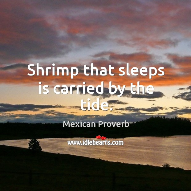 Mexican Proverbs