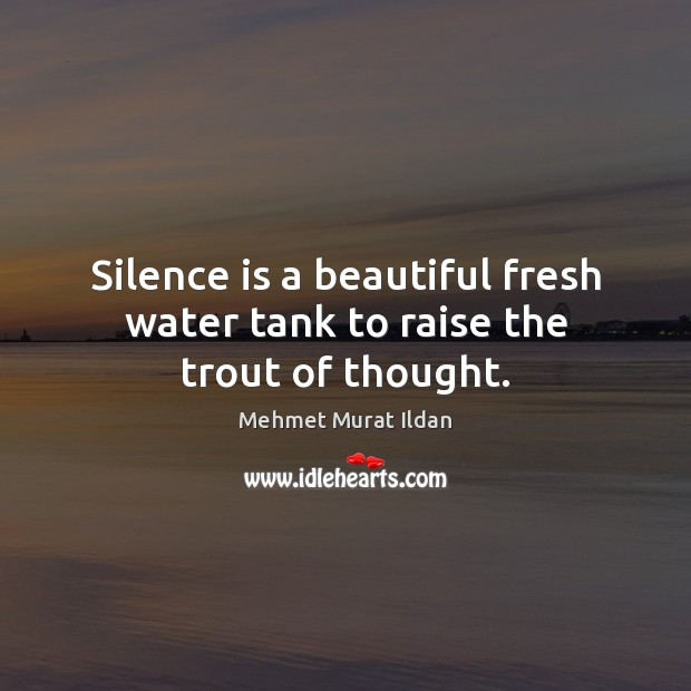 Image, Silence is a beautiful fresh water tank to raise the trout of thought.