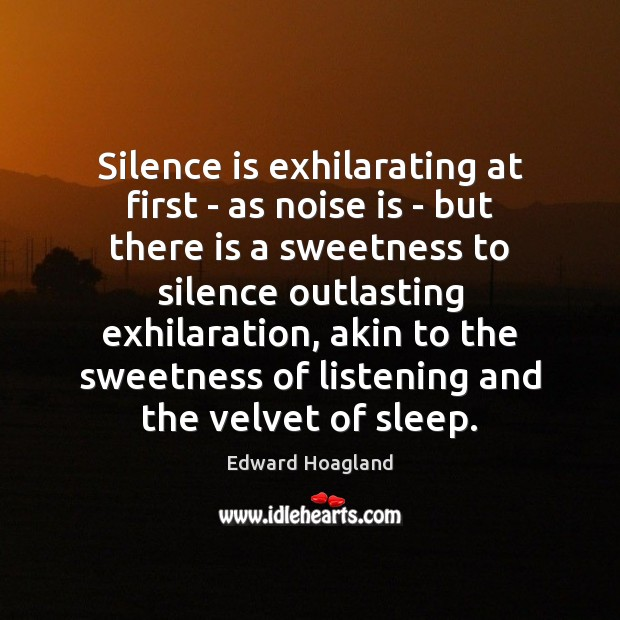 Silence is exhilarating at first – as noise is – but there Silence Quotes Image
