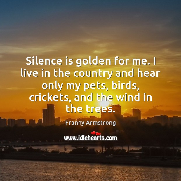 Silence is golden for me. I live in the country and hear Franny Armstrong Picture Quote