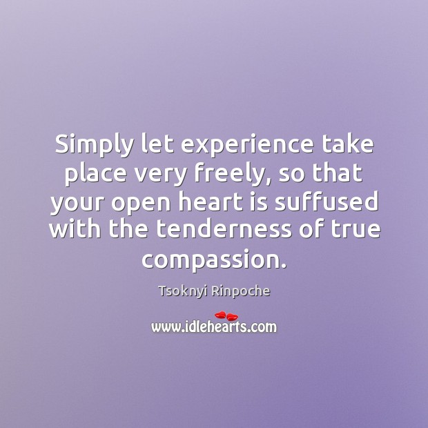 Simply let experience take place very freely, so that your open heart Tsoknyi Rinpoche Picture Quote