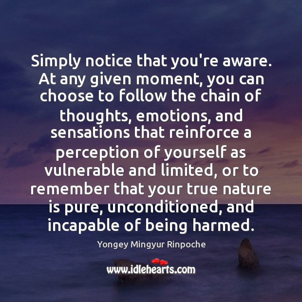 Simply notice that you're aware. At any given moment, you can choose Yongey Mingyur Rinpoche Picture Quote
