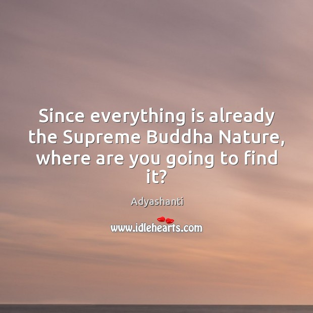 Since everything is already the Supreme Buddha Nature, where are you going to find it? Image