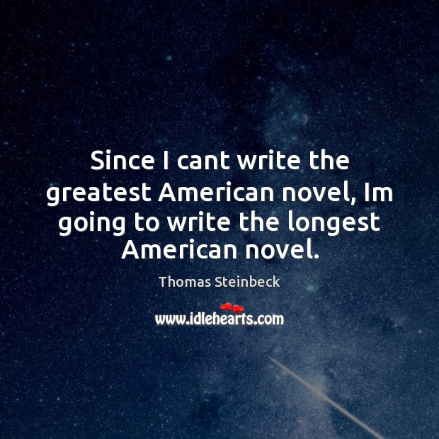 Since I cant write the greatest American novel, Im going to write Image