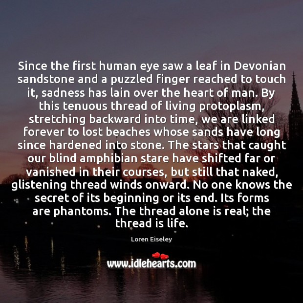 Since the first human eye saw a leaf in Devonian sandstone and Loren Eiseley Picture Quote