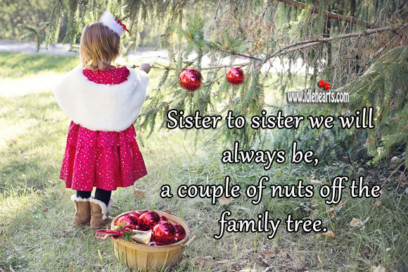 Sister to sister we will always be, a couple of nuts off the family tree. Sister Quotes Image