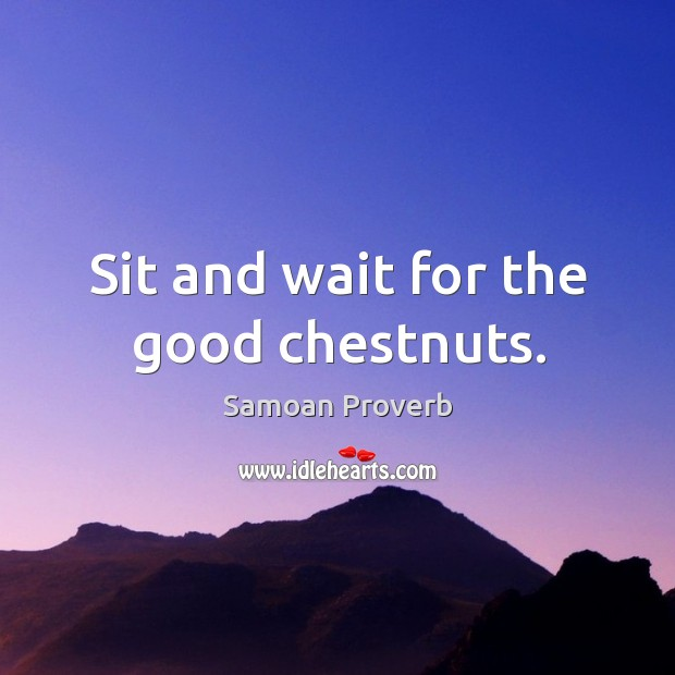 Sit and wait for the good chestnuts. Samoan Proverbs Image