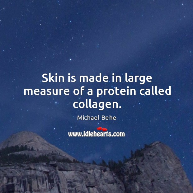 Skin is made in large measure of a protein called collagen. Image