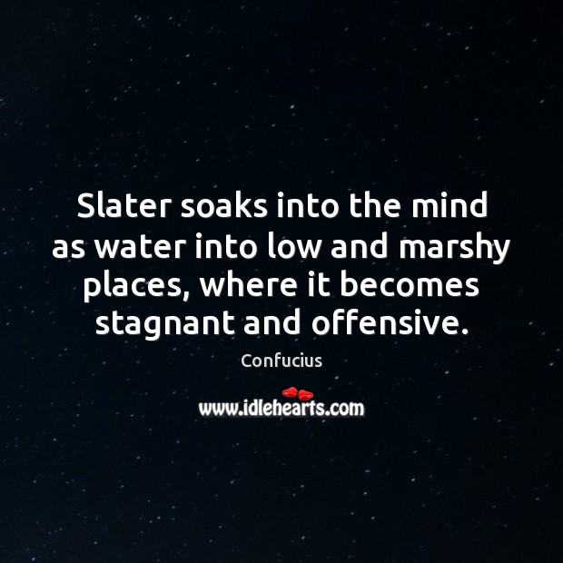 Slater soaks into the mind as water into low and marshy places, Offensive Quotes Image