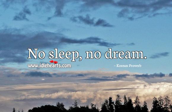 No Sleep, No Dream.