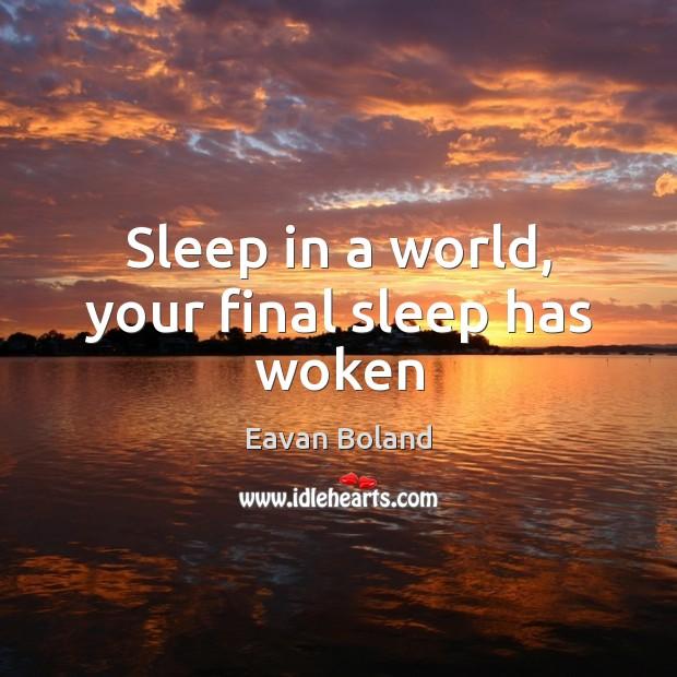 Sleep in a world, your final sleep has woken Image