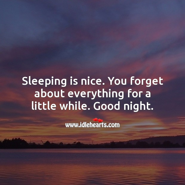 Sleeping is nice. You forget about everything for a little while. Good night. Good Night Quotes Image