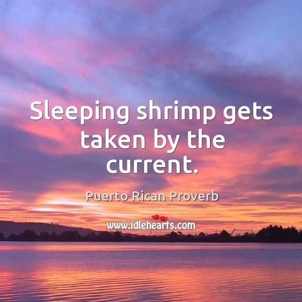 Sleeping shrimp gets taken by the current. Puerto Rican Proverbs Image